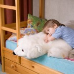 Thoughtful Boy With Soft Toy Lying On Bunk Bed