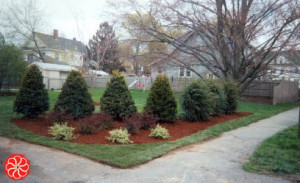 Feng shui landscaping for corner lots trees for Corner lot landscaping pictures